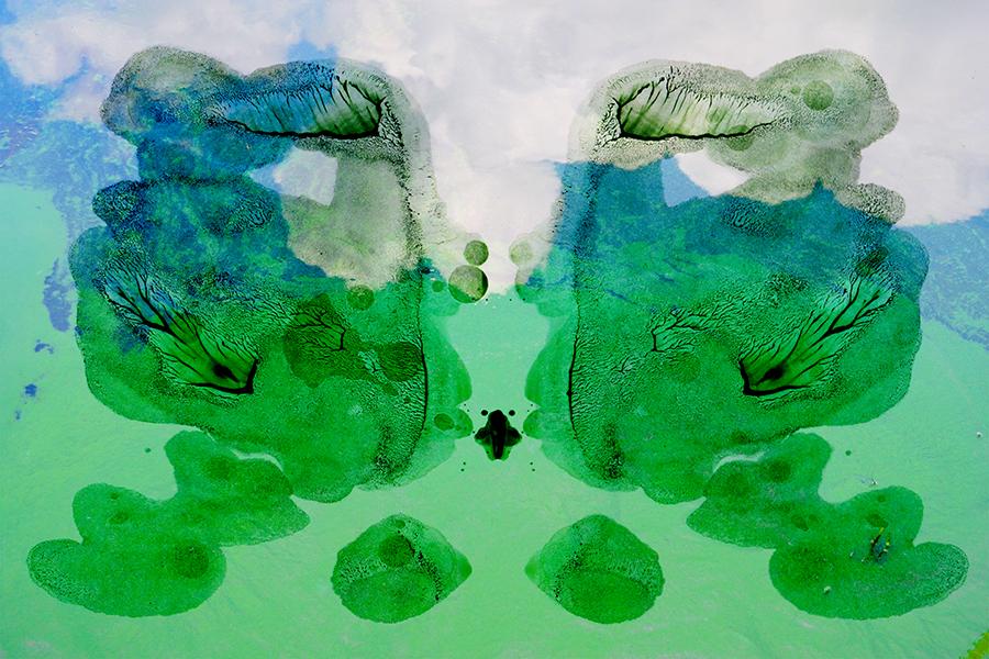 faces_45x30_72dpi